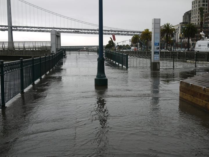 SF King Tide