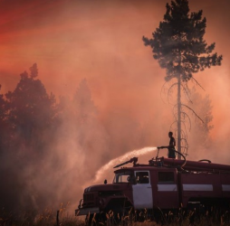 Cutting Out Wildfire Risk